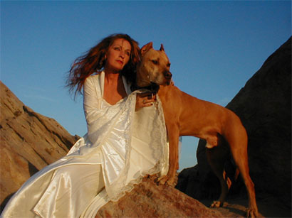 Largest pitbull rescue in the world